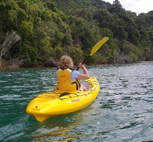 Catch 390 - Marlborough Sounds